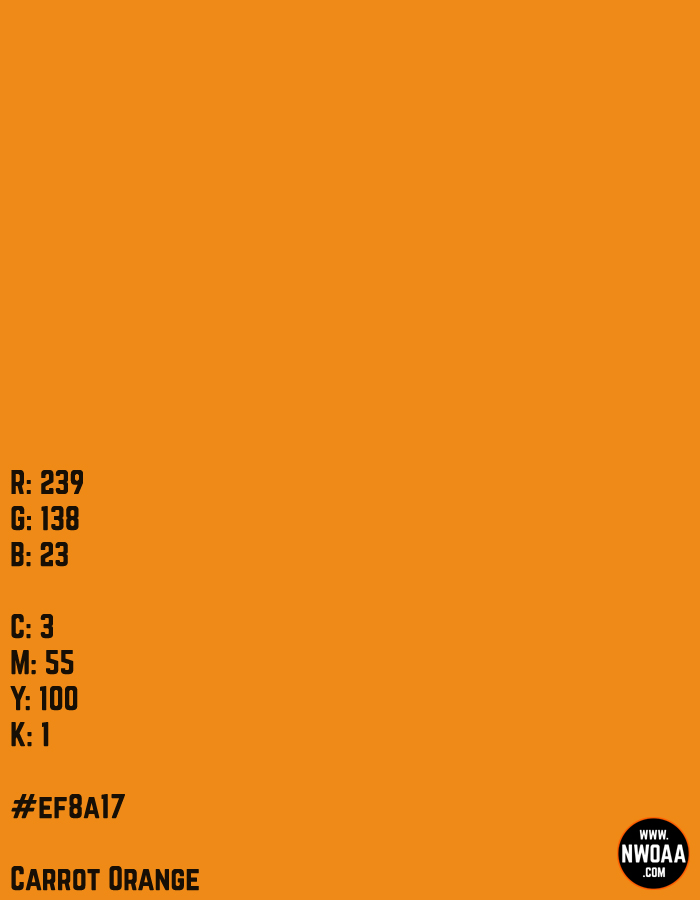 Color Of The Day #56 - Carrot Orange #ef8a17