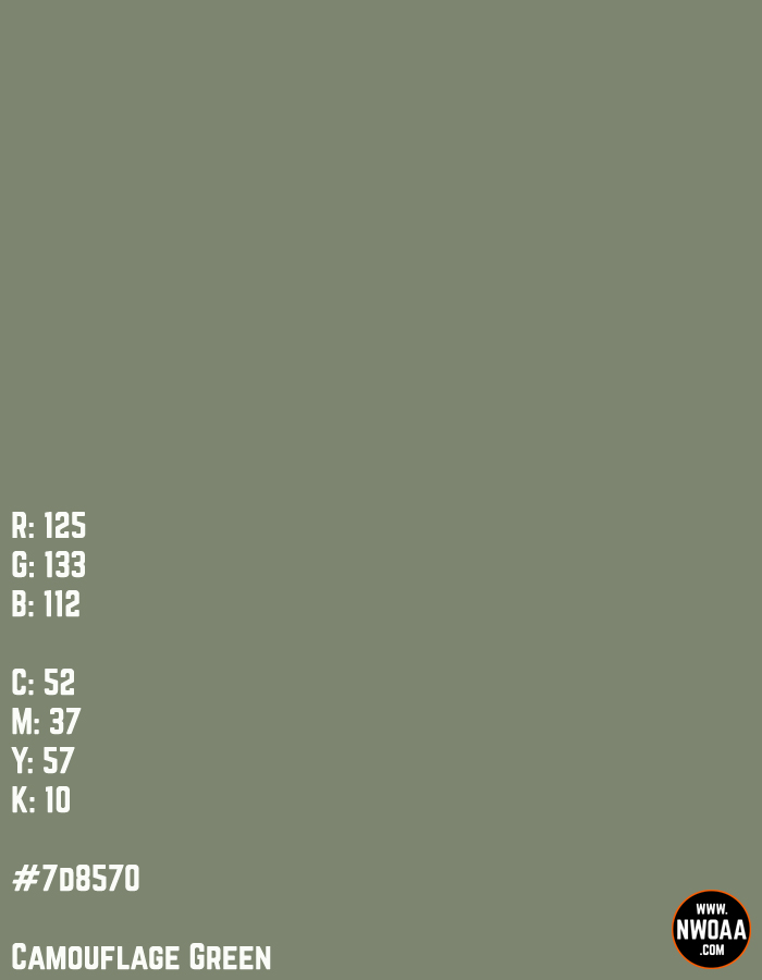 Nationwide World Of American Artists (NWOAA) Color Of The Day #82 - Camouflage Green #7d8570